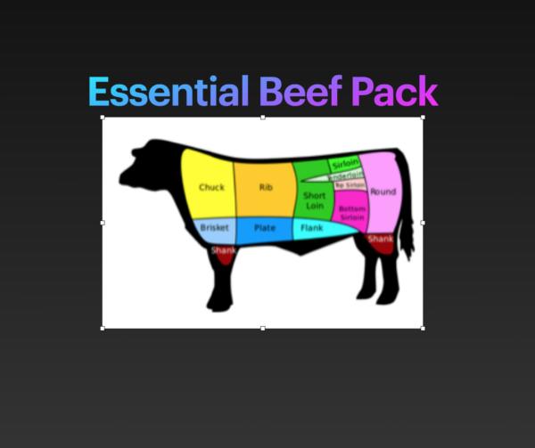 624e44b4072e6f86dcf5322feca224b96d490240 600x503 - #7 Essential Beef Pack